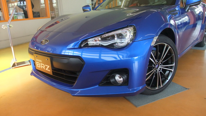 Name:  bluebrz1.jpg
