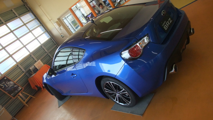 Name:  bluebrz2.jpg