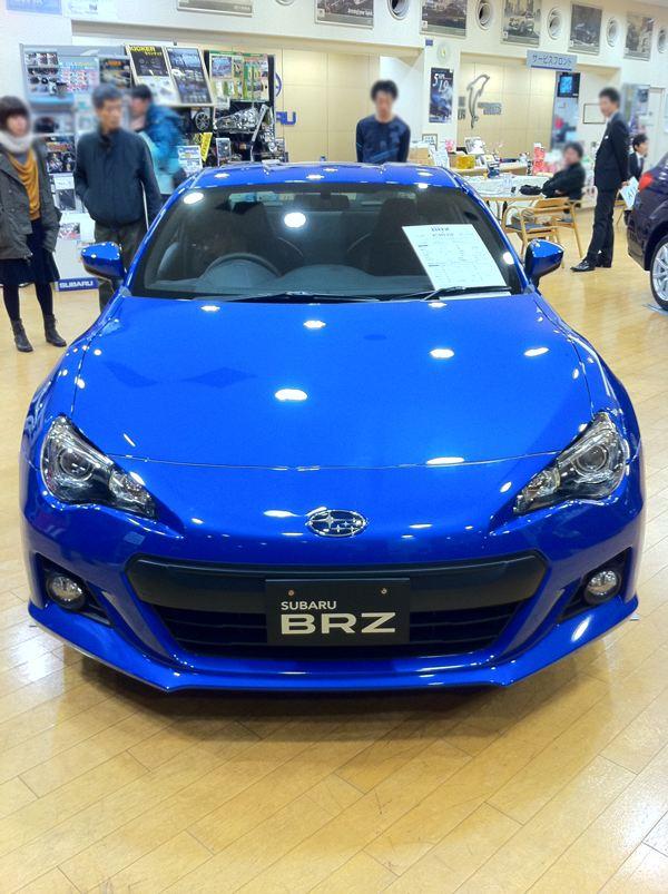 Name:  bluebrz6.jpg Views: 35298 Size:  88.0 KB