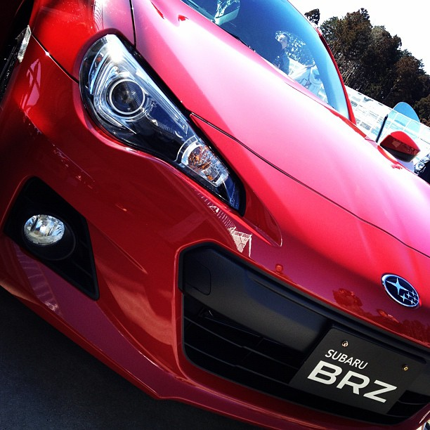 Name:  red-brz-2.jpg