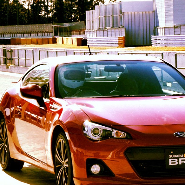 Name:  red-brz-14.jpg