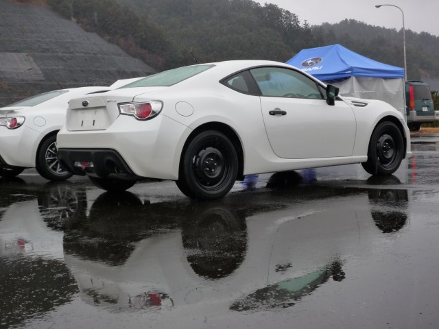 Name:  whitebrz2.jpg
