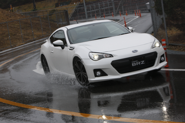 Name:  whitebrz3.jpg