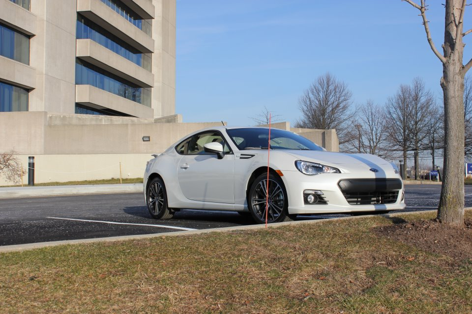 Name:  whitebrz7.jpg