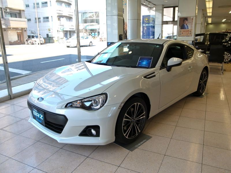Name:  whitebrz10.jpg