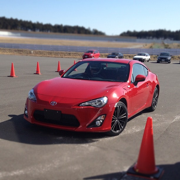 Name:  red-brz-9.jpg