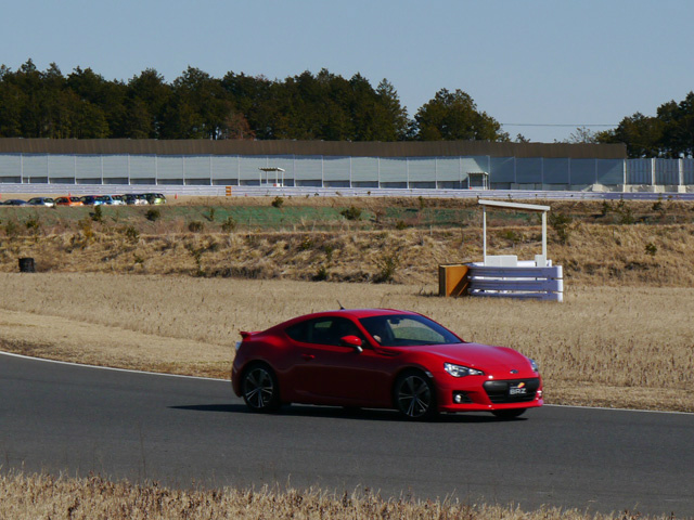 Name:  red-brz-13.jpg